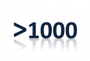 >1000 Follower in den sozialen Netzwerken