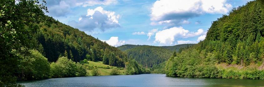 Thüringer Wald, Rennsteig