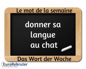 chat deutsch französisch