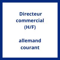 Salaire Directeur commercial allemand courant en France