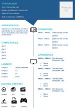 Lebenslauf Muster 3 französisch